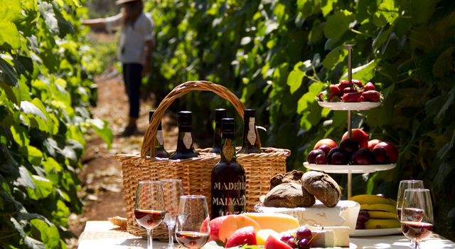 Madeira Wine Picnic, Calheta Vineyards