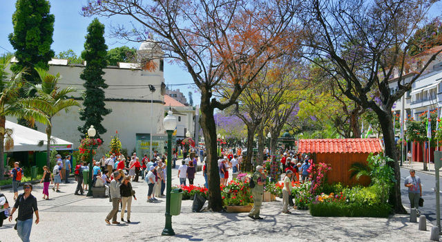 Funchal city during Flower Festival