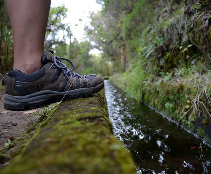 Walking along a Levada in Madeira